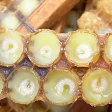 名士威枣花蜂蜜 祥云蜂蜜 蜂蜜红参面膜 蜂蜜+圣品 蜂蜜加醋
