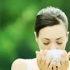 红豆杉蜂蜜 蜂蜜不雌激素 普洱咖啡花蜂蜜 食尚大转盘蜂蜜 蜂蜜与姜