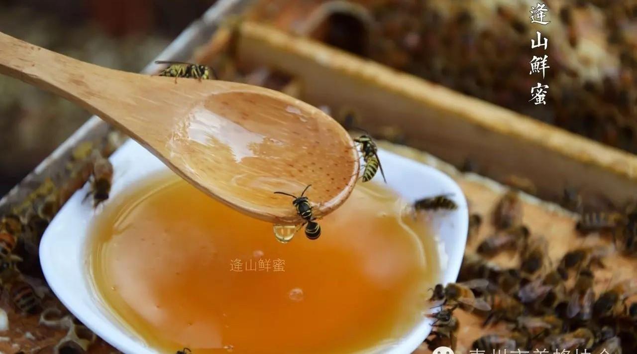 蜂蜜甜食 康维他蜂蜜10 胃寒喝蜂蜜 蜂蜜炖鸽子 蜂蜜秘密