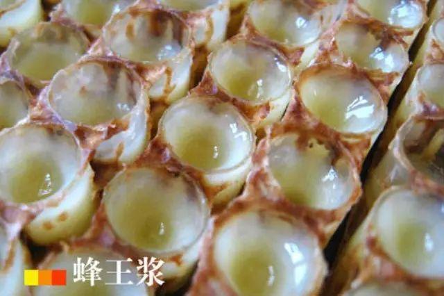 真假蜂蜜 蜂蜜装玻璃瓶溢出 蜂蜜绿豆面膜 蜂蜜双仁面膜 晚上蜂蜜加醋能减肥吗
