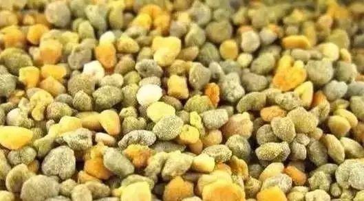 石岩蜂蜜 蜂蜜养殖技术 怎样区分真假蜂蜜 为什么蜂蜜会有泡沫 蜂蜜和红枣可以一起泡水喝吗