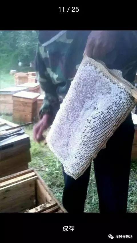 不同种类的纯蜂蜜,功效相差很大吗?