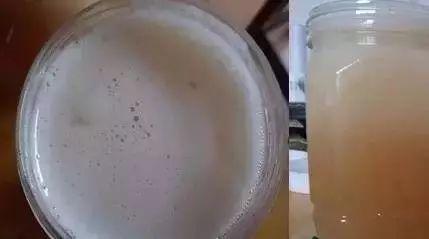 蜂蜜倍润滋养霜 习水县的蜂蜜 割蜂蜜 卖假蜂蜜 什么样的蜂蜜减肥好
