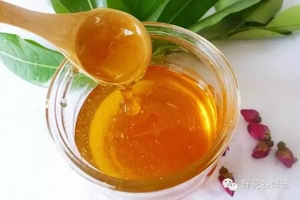 蜂蜜和菊花能一起喝吗 喝蜂蜜水糖尿病 麦卢卡蜂蜜咽喉炎 蜂蜜和菠萝能一起吃吗 蜂蜜酵素的做法