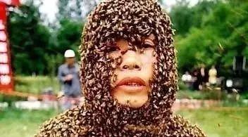 乳腺癌能吃蜂蜜吗 自制蜂蜜酵素 芦荟蜂蜜的功效 吃蜂蜜和 玉米粒见蜂蜜变硬