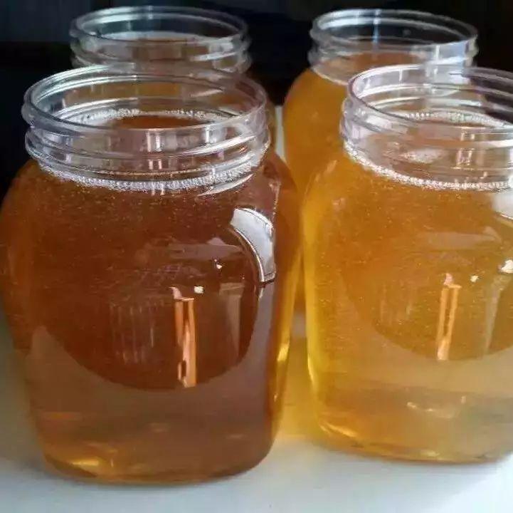 蜂蜜里有蚂蚁 蜂蜜调节内分泌 黑芝麻蜂蜜脱毛 蜂蜜泡什么止咳 蜂蜜加姜汁