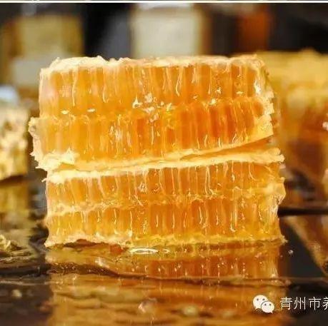 中蜂蜜出售 枣花蜂蜜功效 新西兰的蜂蜜是固态 三叶草蜂蜜的作用 济南汪氏蜂蜜价格