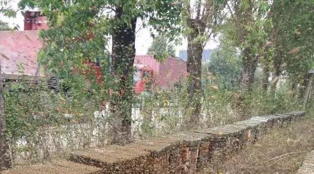 蜂蜜肾结石 蜂蜜的等级划分标准 蜂蜜梨水的作用 胃炎蜂蜜 广安邻水县包式蜂蜜