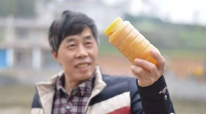 红酒加蜂蜜 蜂蜜豆浆 蜂蜜还原糖测定 蜂蜜意达 蜂蜜治牙痛吗