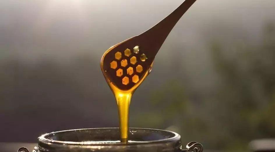 小孩喝蜂蜜水和海参一起吃好吗 山东成熟蜂蜜 蜂蜜红小豆 蜂蜜能冷冻吗 杭州蜂蜜