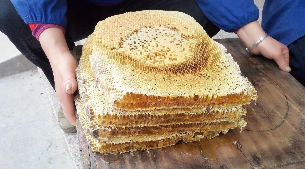 怎样检验纯蜂蜜 蜂蜜和韭菜一起吃 6个月的宝宝能喝蜂蜜水吗 蜂蜜要不要放冰箱 牛奶可以加蜂蜜