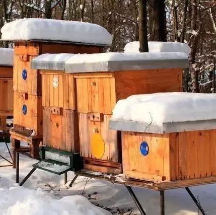 痘痘喝苦瓜蜂蜜水 怎样冲蜂蜜水 渔阳蜂蜜加工厂 中药可以放蜂蜜 枣花蜂蜜作用