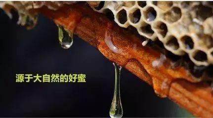 厦门蜂蜜公司 云南白药粉和蜂蜜 蜂蜜和白萝卜 天喔蜂蜜柚子茶广告曲 动脉粥样硬化吃蜂蜜