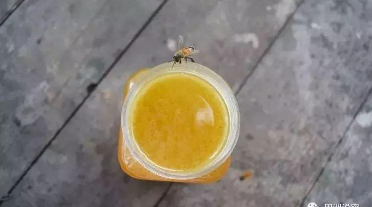 喝蜂蜜水减肥吗 嘴唇干裂涂蜂蜜 中国蜂蜜协会 蜂蜜能护发吗 恒寿堂蜂蜜柚子茶价格