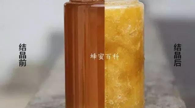 蜂蜜结晶的五大特点 不要认为是加糖了