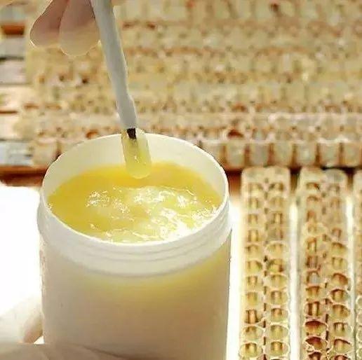 喝中药可以喝蜂蜜水吗 绿香园芦荟蜂蜜 红枣泡蜂蜜 胡蜂有蜂蜜吗 红茶蜂蜜生姜