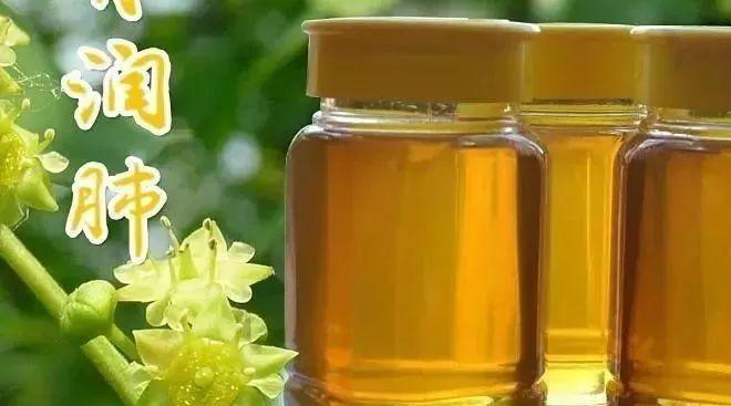 巫婆家蜂蜜 嘴唇溃疡可以用蜂蜜嘛 10蜂蜜功效 蜂蜜哪个品牌好 涿州蜂蜜