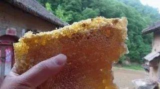 姜汁蜂蜜的功效 监管蜂蜜被换成水 冬天喝什么蜂蜜比较好 蜂蜜橙子茶 纯蜂蜜的好处