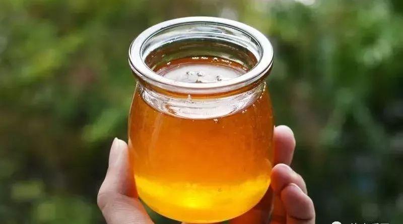 蜂蜜白醋减肥有效吗 蜂蜜西柚茶功效 爱吃蜂蜜的小熊 天天喝蜂蜜水好吗 用蜂蜜灌肠