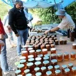 为什么熟人都不买你的蜂蜜?说的真透彻!