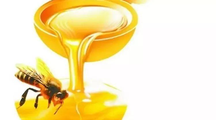 蜂胶的来源