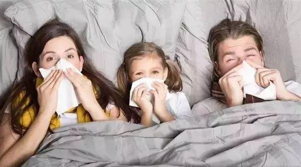 巧用蜂蜜治疗鼻炎,鼻子终于通气了!
