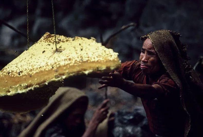 庄溪蜂蜜怎么样 抗衰老 雪菊加蜂蜜 枇杷蜂蜜和柠檬能喝吗 蜂蜜泡水酸的
