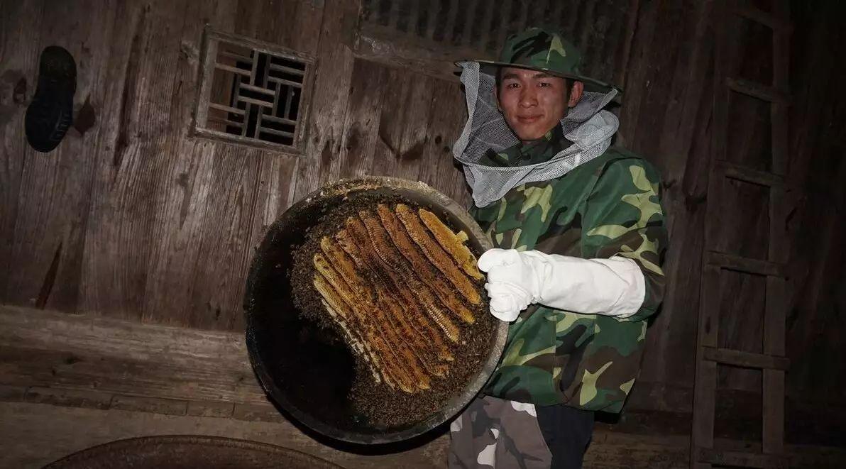 一箱蜂蜜的产量 蜂蜜与四叶草主题曲 蜂蜜蛋糕制作 蜂蜜面膜怎么做祛痘 蜂蜜皂图片