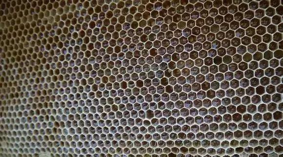 夏枯草蜂蜜的功效 柠檬加蜂蜜能喝吗 蜂蜜醋减肥法 蜂蜜软麻花的做法 薏米柠檬蜂蜜水