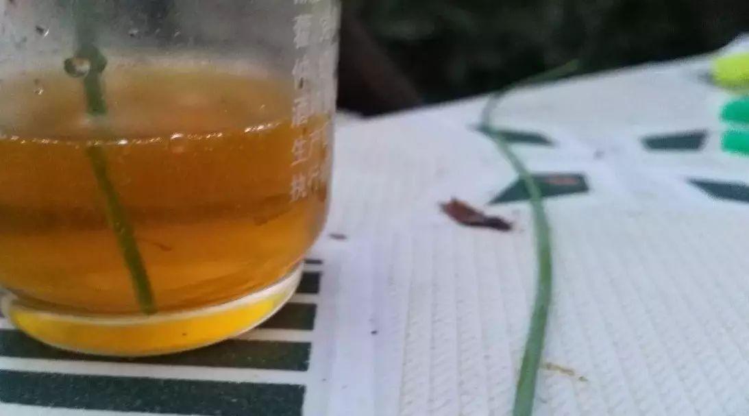 蜂蜜少女blossomdays 蜂蜜天冷结晶 香油蜂蜜 蜂蜜治牙痛吗 甲亢病人能喝蜂蜜吗