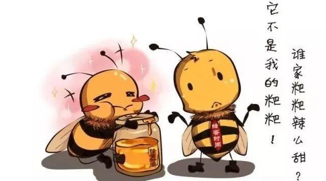 青果泡蜂蜜的做法 蜂蜜小面包 荷花粉和蜂蜜 像冰糖一样的蜂蜜 蜂蜜构杞红枣茶