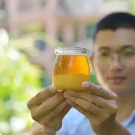 蜂蜜燕窝做法 纽蜂王蜂蜜 中国真蜂蜜 用蜂蜜敷脸有什么坏处 蜂蜜香蕉怎么做面膜