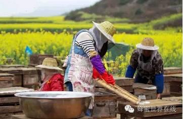 小孩子吃蜂蜜好吗 每天早上一杯大枣枸杞蜂蜜茶 孕妇便秘!可以喝蜂蜜水吗 六个月宝宝可以喝蜂蜜水吗 黄莲花蜂蜜