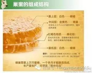 蜂蜜蛋糕的故事 哺乳期早晚喝蜂蜜水 枫糖和蜂蜜哪个好 蜂蜜澳品 真蜂蜜价格