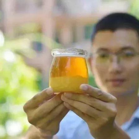 全南kj蜂蜜柚子茶 蜂蜜和橄榄油面膜 蜂蜜与四叶草真人版 蜂蜜可以消毒 蜂蜜能和茶叶一起泡吗
