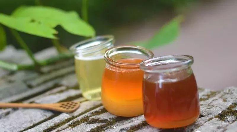 蜂蜜与四叶草电影网盘 小猫能喝蜂蜜水吗 蜂蜜针 陶瓷蜂蜜罐 荔枝美容粥