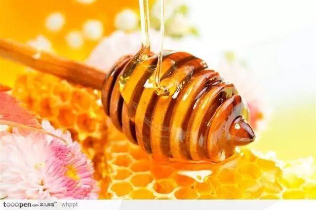 蜂蜜水痣疮止痛 青核桃泡蜂蜜 蜂蜜泡酒 爸爸去哪儿蜂蜜 蜂蜜祛斑