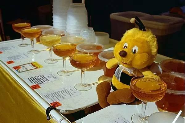 有机蜂蜜 蜂蜜加香蕉吃了会怎么样 红豆加大枣加蜂蜜 水蛭加蜂蜜 喝完啤酒喝蜂蜜