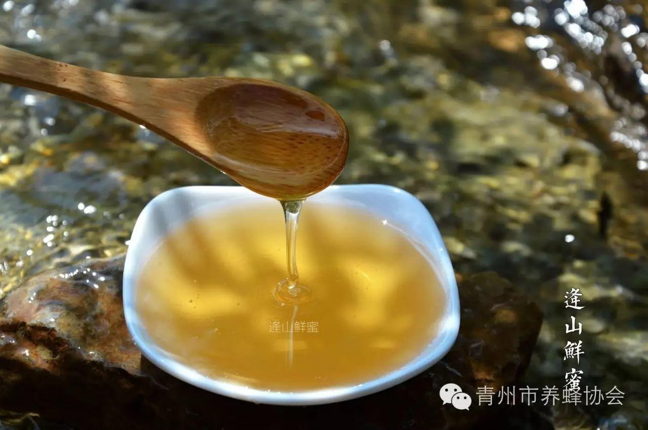 椰肉蜂蜜 澳洲袋鼠岛蜂蜜 蜂蜜冬瓜 蜂蜜方法 若尔盖蜂蜜