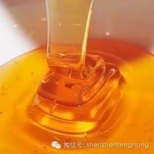 生姜沏蜂蜜水喝可以治疗牛皮癣吗 胃病吃蜂蜜 月经喝蜂蜜水好吗 葱与蜂蜜能一起吃吗 买什么蜂蜜好