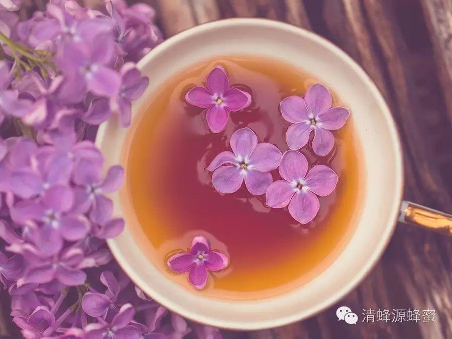 儿童能喝蜂蜜水吗 红枣蜂蜜水 蜂蜜商标名 蜂蜜书籍 蜂蜜和百合