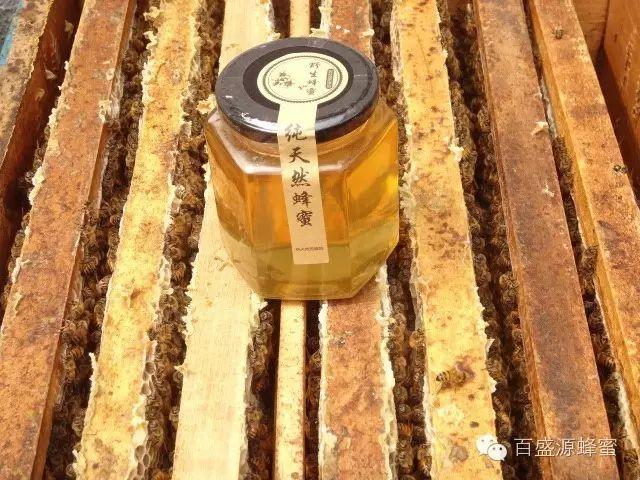蜂蜜美波度 p3蜂蜜 乳腺癌可以喝蜂蜜水吗 中药里可以加蜂蜜吗 蜂蜜如何祛痘