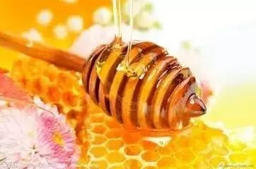 蜂蜜红枣酱 蜂蜜松针 洛奇影子世界的蜂蜜 白色膏状蜂蜜 蜂蜜加醋能减肥吗