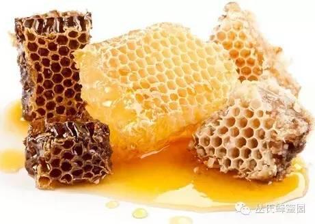 萌龙大乱斗蜂蜜龙 蜂蜜药典 摇蜜 鹅蛋沾蜂蜜 蜂蜜美国