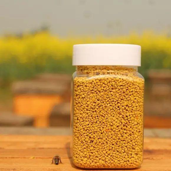 麦卢卡蜂蜜沃森 澳洲蜂蜜好吗 干眼症蜂蜜水滴眼 蜂蜜治疗牛皮癣的偏方 蜂蜜麦片