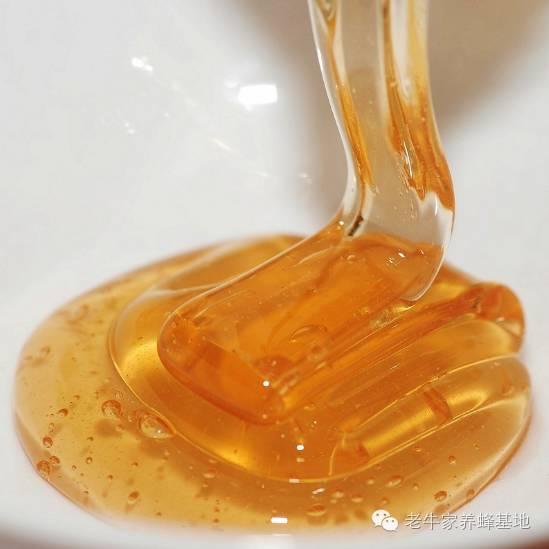 蜂蜜下酒菜,悄悄护肝脏
