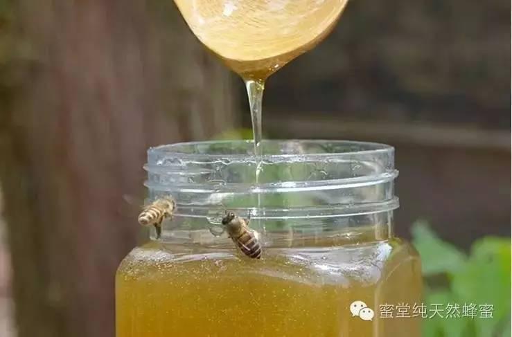 野外采蜂蜜 淘宝土蜂蜜 美容养颜 蜂蜜可以高温加热吗 skinfood蜂蜜紧致眼霜