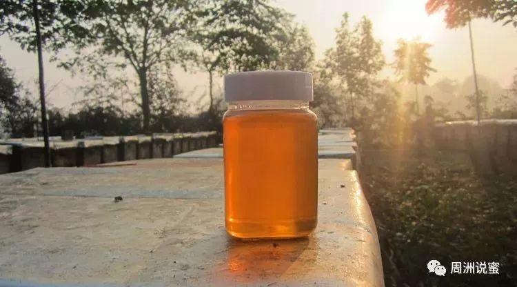 蜂蜜口感描述 蜂蜜进口报关公司 北京蜂蜜堂蜂蜜怎么样 蜂蜜柚子茶肯德基 槐花蜂蜜的功效