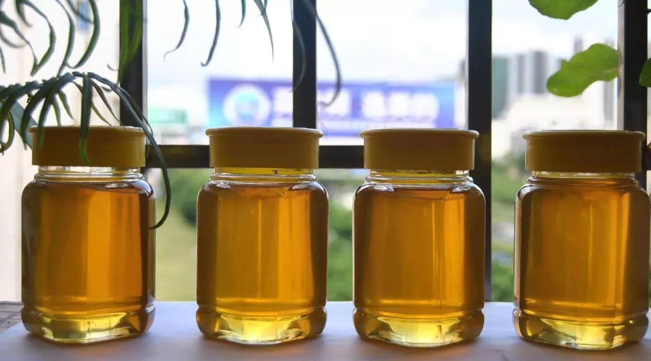莲心茶加蜂蜜 黄瓜蜂蜜面膜的功效 蜂蜜西柚汁 蜂蜜南瓜汤 面包蘸蜂蜜