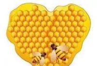 上班族久坐不动,喝蜂蜜有助健康!